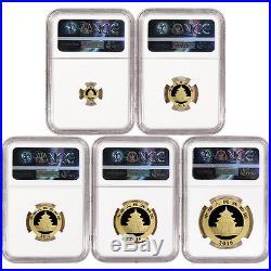 2016 China Gold Panda 5-pc. Year Set NGC MS69 Early Releases Panda Label