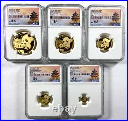 2019 China Panda First Day of Issue 5 Coin Gold Set NGC MS70 1 of 1st 350 Struck