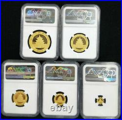 NGC MS70 2021 China Panda 5 Coins Gold Set First Releases Total57g
